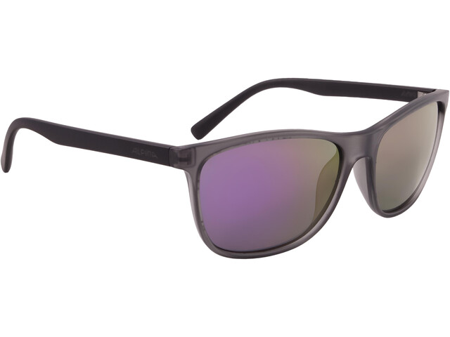 Alpina Jaida Cykelbriller grå/gennemsigtig (2019) | Glasses
